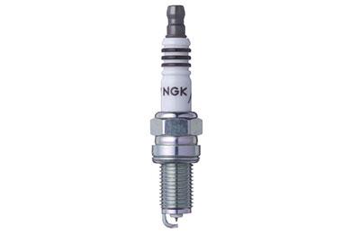 NG 6546 Fro