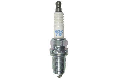 NG 6994 Fro