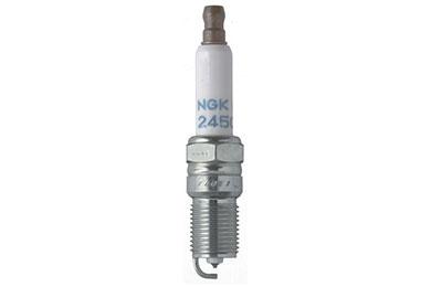 NG 7740 Fro