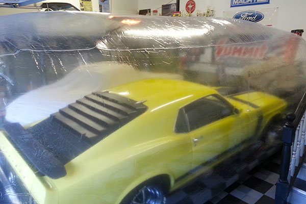 7407 car capsule mach1 mustang