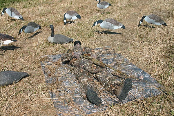 drymate armor all realtree camo cargo liners layout