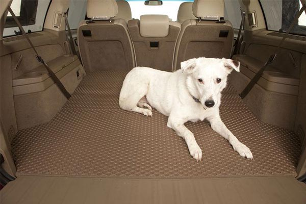 lloyd rubbertite rubber floor mats dog