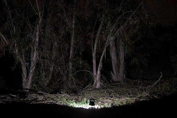 anzo 10watt work light night shot