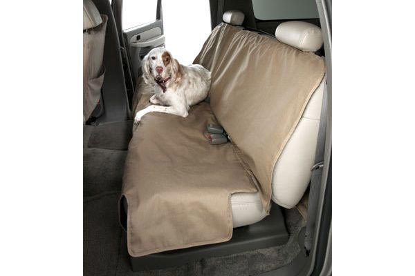 canine econo plus with dog