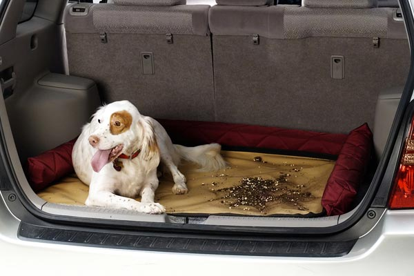 covercraft cargo area pet pad dirt