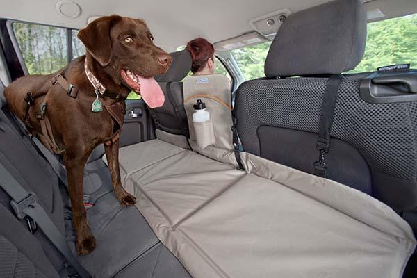 kurgo backseat bridge lifestyle2