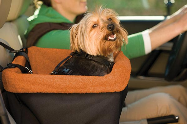 kurgo skybox dog booster seat related1