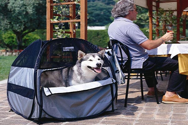 motor trend dog bag pet tent cozy