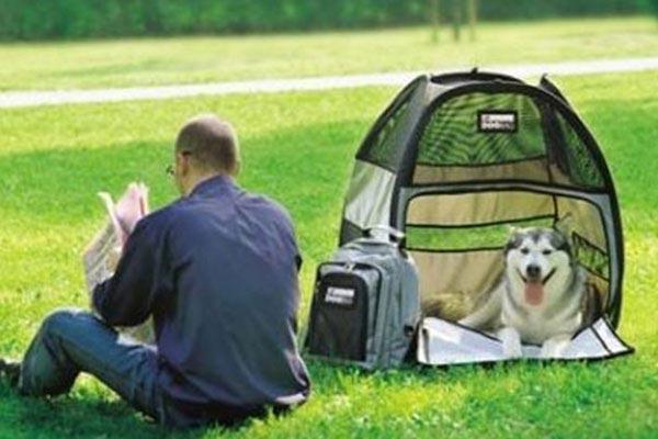 motor trend dog bag pet tent park