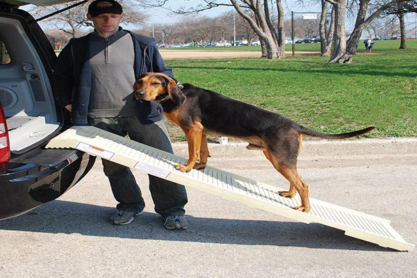 petstep folding pet ramp2