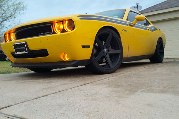 eibach pro kit lowering springs installed on 2010 dodge challenger