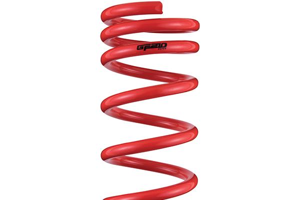 tanabe gf210 lowering springs top