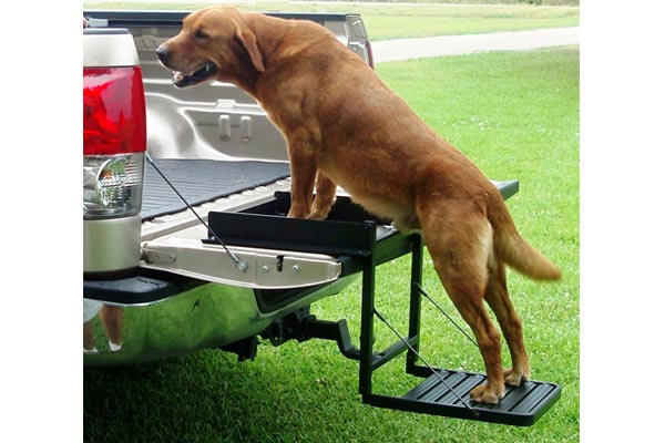 great day truck n buddy tailgate step tailgate dog step