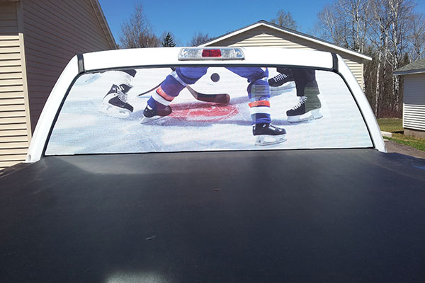 4392 window canvas hockey