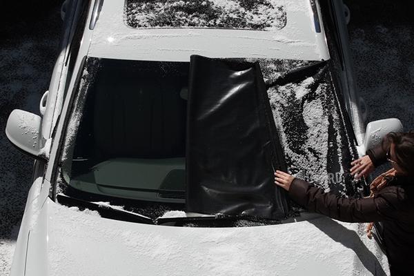 delk frost guard clear windshield