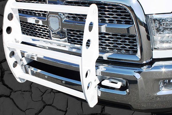 ami swing step grille guard white sample