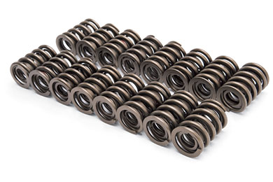 edelbrock valve springs sample