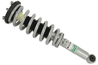 sensen-speedy-strut-spring-and-strut-assembly-sample