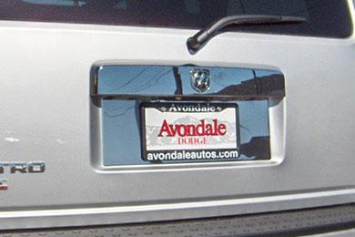 willmore license plate trim sample