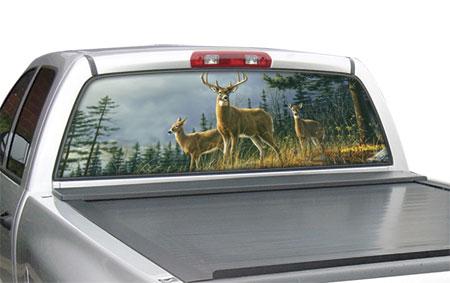 window canvas WC303007-0