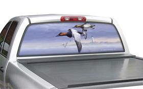 window canvas WC301017-0