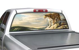 window canvas WC305005-0